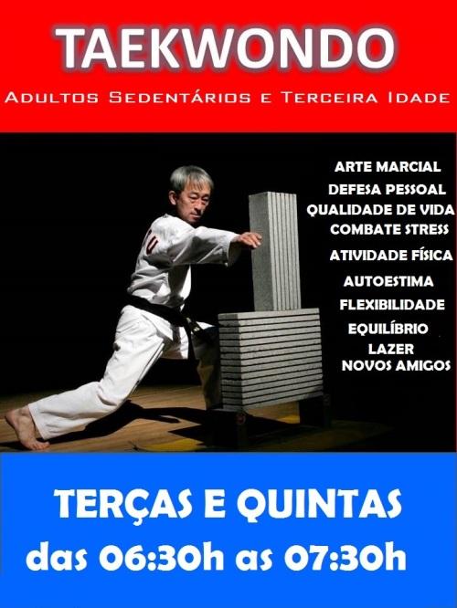 taekwondo-adultos